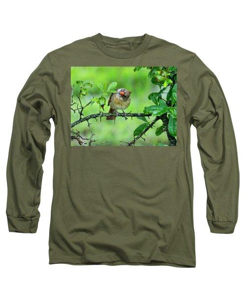 Cardinal Ways Long Sleeve T-Shirt