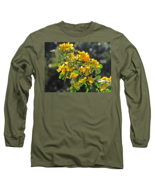Catchlight Bee Over Yellow Blooms Long Sleeve T-Shirt