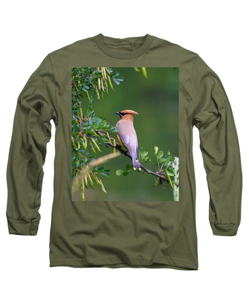 Cedar Waxwing 1 Long Sleeve T-Shirt