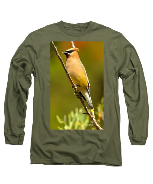 Cedar Waxwing Long Sleeve T-Shirt by Adam Jewell