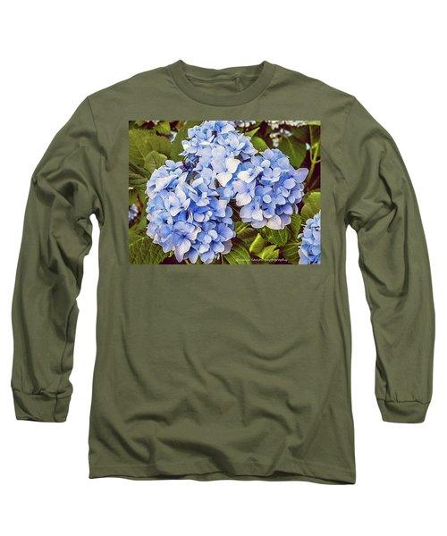 Chase Away The Blues Long Sleeve T-Shirt by Nance Larson
