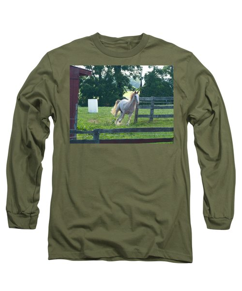 Chester On The Run Long Sleeve T-Shirt by Donald C Morgan