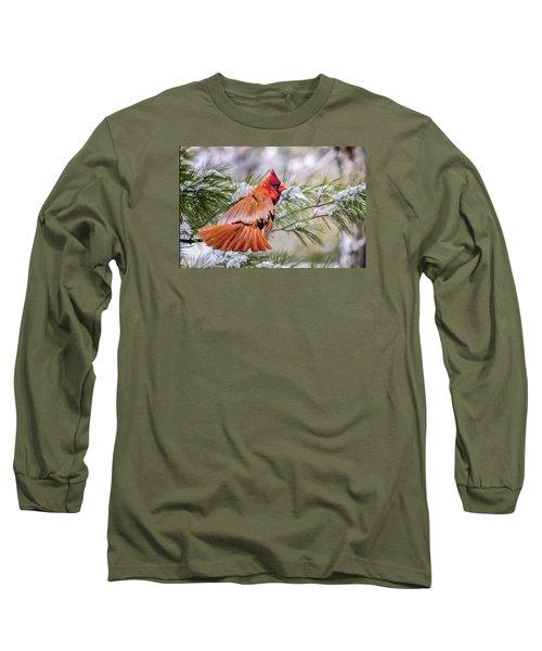 Long Sleeve T-Shirt featuring the photograph Christmas Cardinal by Brian Tarr