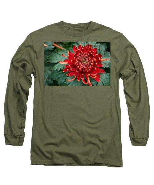 Christmas Chrysanthemum Long Sleeve T-Shirt