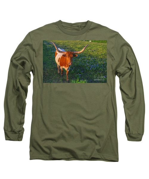 Classic Spring Scene In Texas Long Sleeve T-Shirt by Gary Holmes
