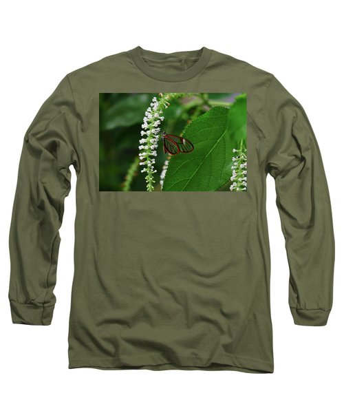 Clearwing Butterfly Long Sleeve T-Shirt by Ronda Ryan