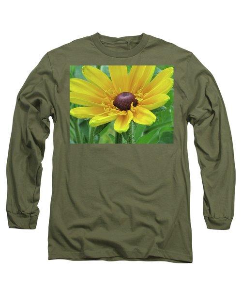 Close Up Summer Daisy Long Sleeve T-Shirt by Michele Wilson