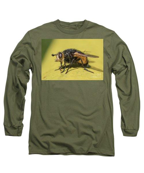 Close Up - Tachinid Fly - Nowickia Ferox Long Sleeve T-Shirt