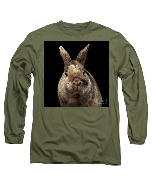 Closeup Funny Little Rabbit, Brown Fur, Isolated On Black Backgr Long Sleeve T-Shirt