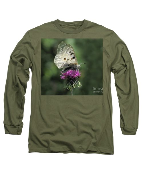 Clouded Apollo Butterfly Long Sleeve T-Shirt by Jacqi Elmslie