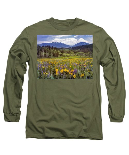 Color Of Spring Long Sleeve T-Shirt by Leland D Howard