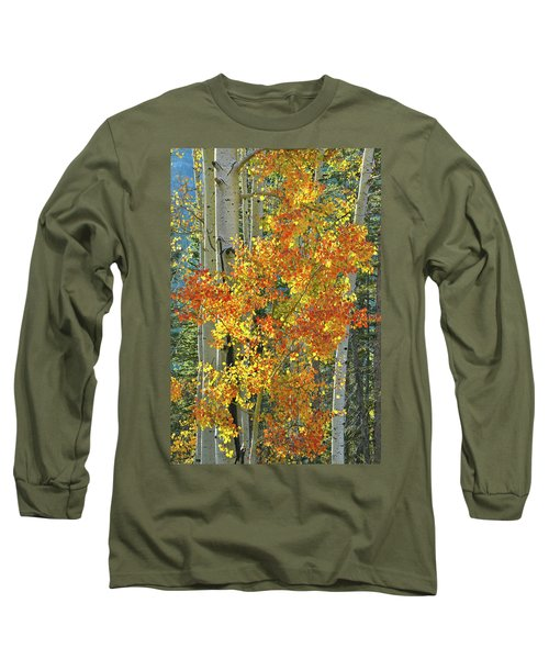 Colorful Aspen Along Million Dollar Highway Long Sleeve T-Shirt