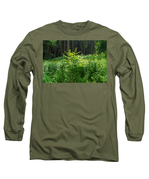 Colors Of A Forest In Vogelsberg Long Sleeve T-Shirt