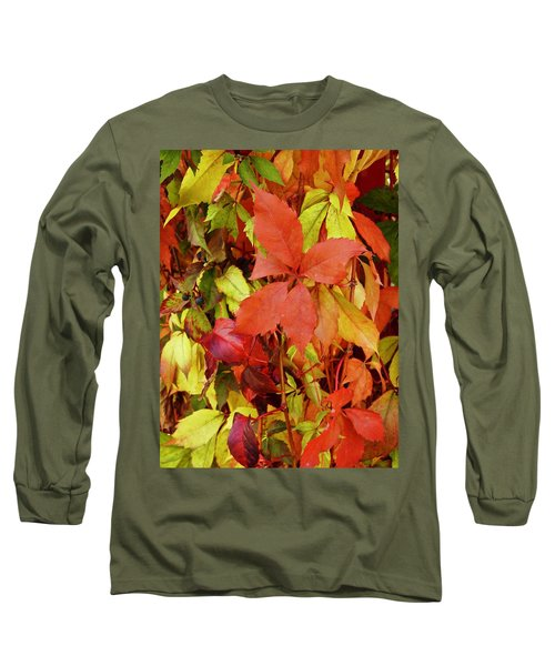Colours Of Autumn Long Sleeve T-Shirt by Brian Chase