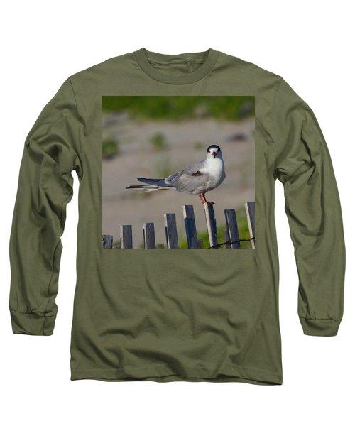 Common Tern Long Sleeve T-Shirt