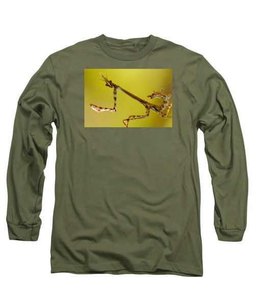 Long Sleeve T-Shirt featuring the photograph Cone Head Mantis by Richard Patmore