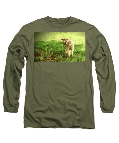 Cotswold Sheep Long Sleeve T-Shirt
