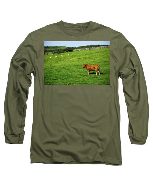 Cow In Pasture Long Sleeve T-Shirt