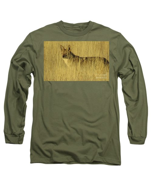 Coyote 4 Long Sleeve T-Shirt