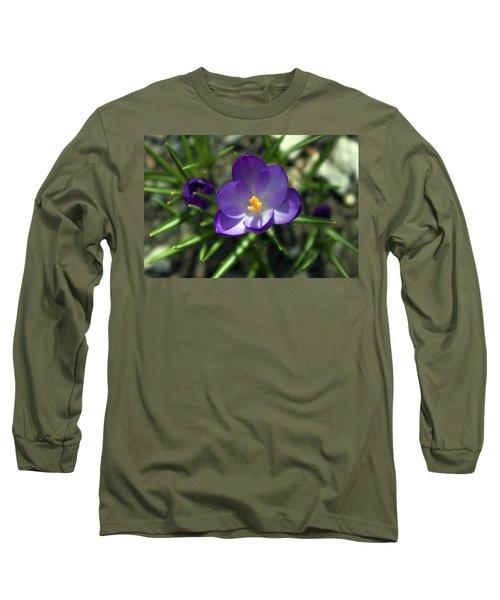 Crocus In Bloom #1 Long Sleeve T-Shirt