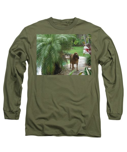 Cujo Hiding Long Sleeve T-Shirt by Val Oconnor