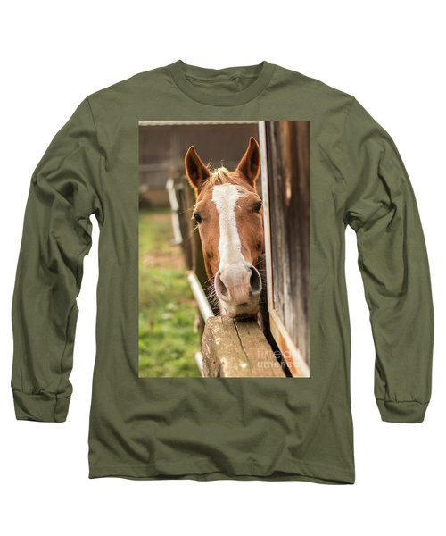 Curious Horse Long Sleeve T-Shirt