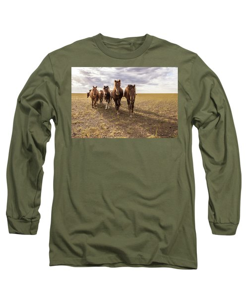Long Sleeve T-Shirt featuring the photograph Curious Horses by Hitendra SINKAR