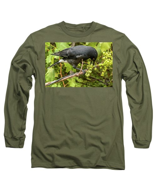 Long Sleeve T-Shirt featuring the photograph  Currawong On A Vine by Werner Padarin