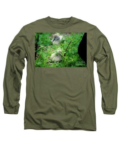 Cygnets V Long Sleeve T-Shirt by Cassandra Buckley
