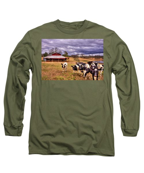 Dairy Heifer Groupies The Red Barn Art Long Sleeve T-Shirt by Reid Callaway