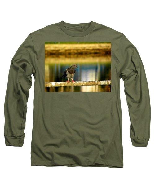 Daytona Beach Pigeon Long Sleeve T-Shirt by Chris Mercer