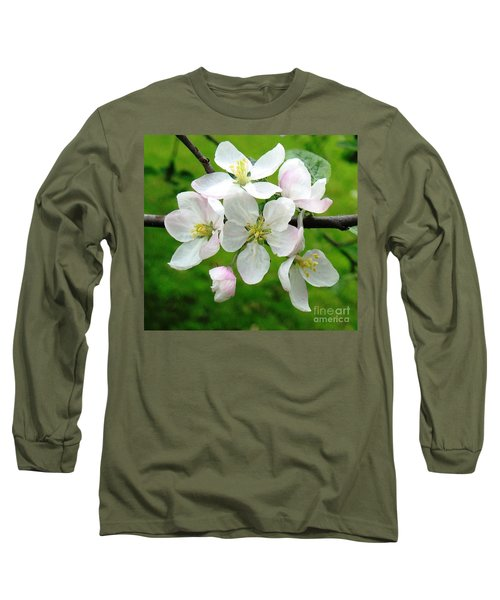 Delicate Apple Blossoms Long Sleeve T-Shirt