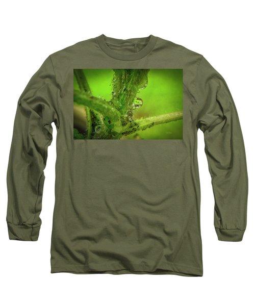 Dew Drop Closeup Long Sleeve T-Shirt