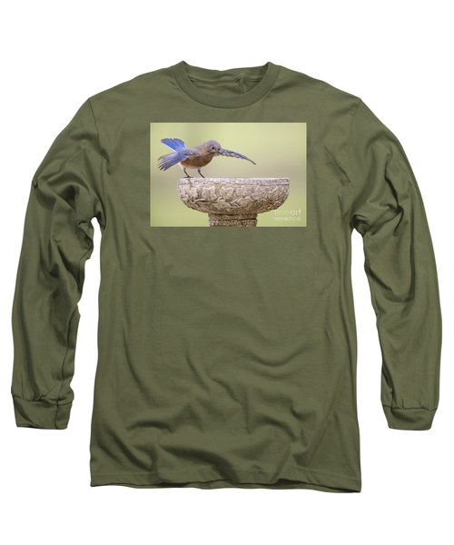 Diving In Long Sleeve T-Shirt
