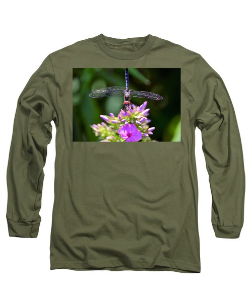 Dragonfly And Phlox Long Sleeve T-Shirt by Kathy Eickenberg