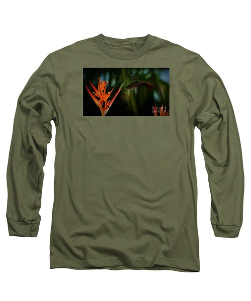 Long Sleeve T-Shirt featuring the photograph Drawn To Beauty by Pamela Blizzard