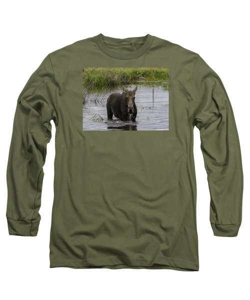 Drooling Cow Moose Long Sleeve T-Shirt by Elizabeth Eldridge