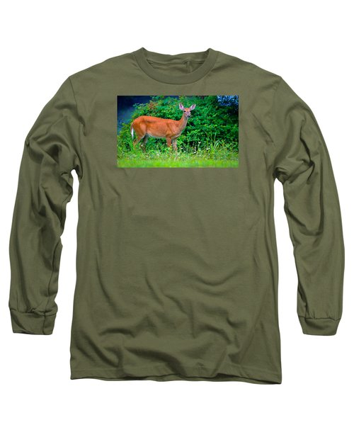 Dusk Deer Long Sleeve T-Shirt by Brian Stevens