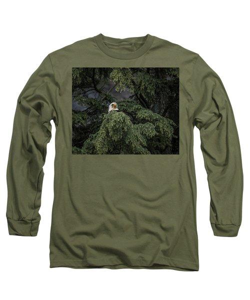 Eagle Tree Long Sleeve T-Shirt by Timothy Latta