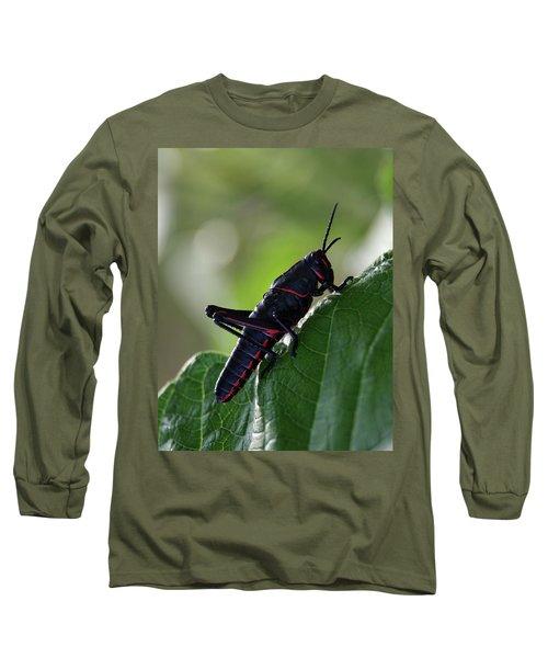 Eastern Lubber Grasshopper Long Sleeve T-Shirt by Richard Rizzo