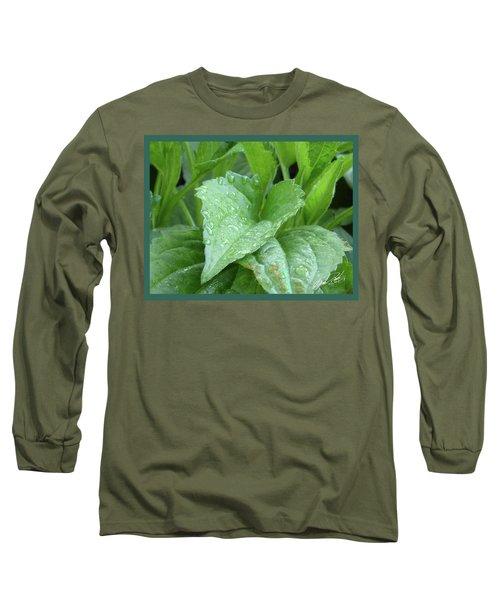 Echinacea After The Rain I Long Sleeve T-Shirt