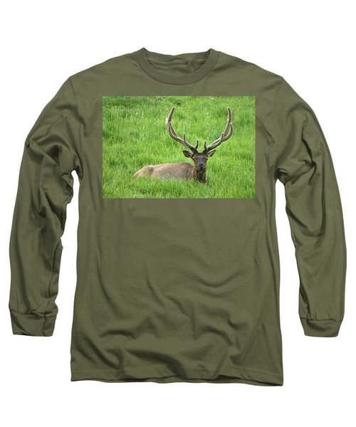 Long Sleeve T-Shirt featuring the photograph Elk 6 by Gary Lengyel