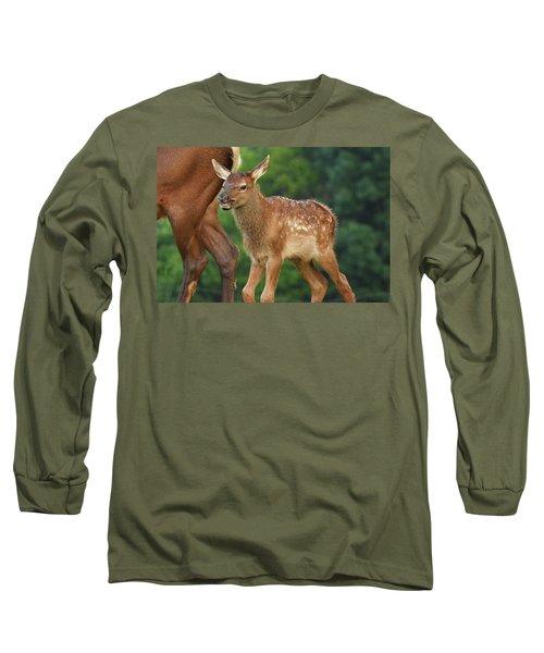 Elk Calf Arrives Long Sleeve T-Shirt by Alan Lenk