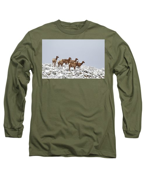 Elk Cows On The Alert In The Tetons Long Sleeve T-Shirt