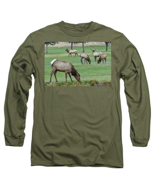 Elk On Golf Course Estes Park Colorado Long Sleeve T-Shirt