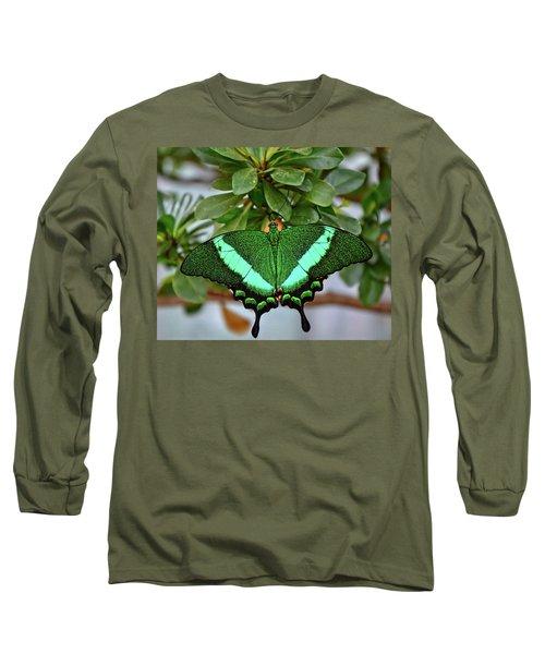 Emerald Swallowtail Butterfly Long Sleeve T-Shirt by Ronda Ryan