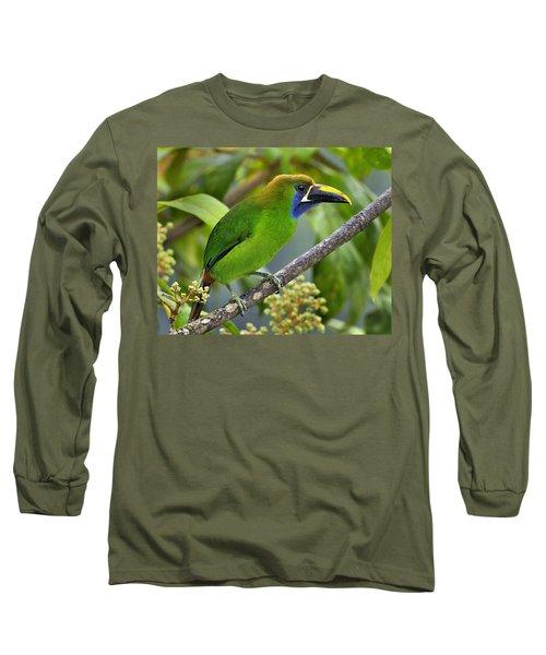 Emerald Toucanet Long Sleeve T-Shirt