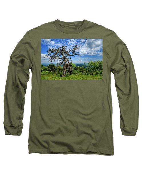 Ent At The Top Of The Hill - Color Long Sleeve T-Shirt by Joni Eskridge