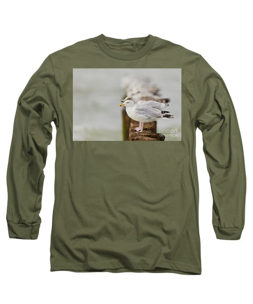 European Herring Gulls In A Row Fading In The Background Long Sleeve T-Shirt