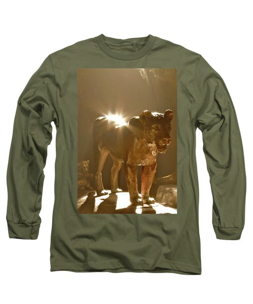 Evening's Light Long Sleeve T-Shirt by Laddie Halupa